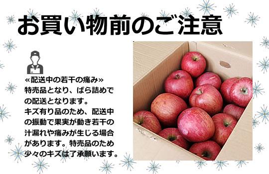 http://www.mameweb.com/image/apple/540apwakeari5.jpg