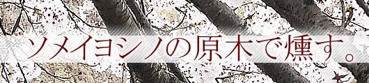 ソメイヨシノの原木で燻す