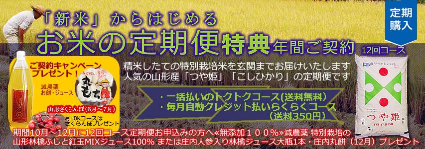 http://www.mameweb.com/image/kome/853-300komenenkeinew2016.jpg