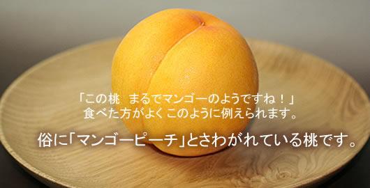 マンゴーピーチhttp://www.mameweb.com/image/momo/imag005.jpg
