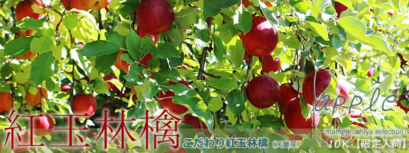 http://www.mameweb.com/image/newshop-la01.jpg