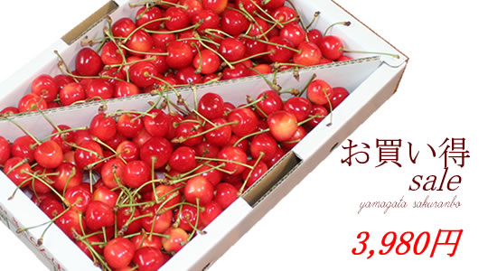 http://mameweb.com/image/sakuranbo/540s10mainimg.jpg