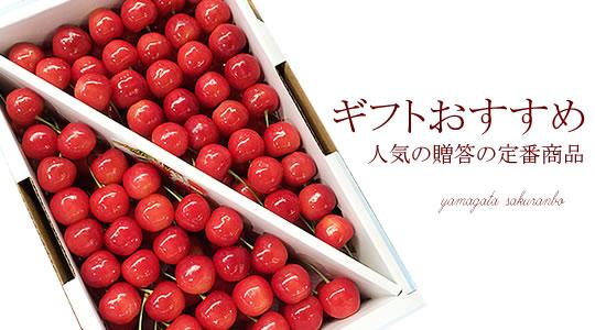 http://mameweb.com/image/sakuranbo/540s7mainimg.jpg