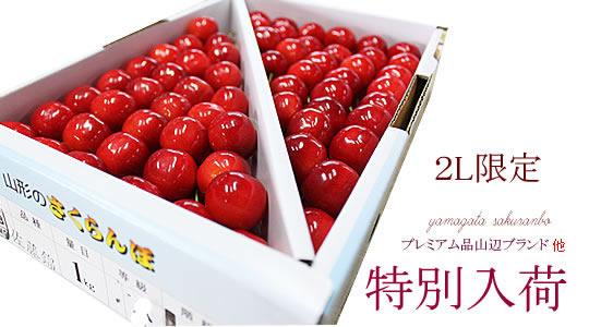http://mameweb.com/image/sakuranbo/540sakuranbo06-main.jpg