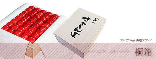 http://mameweb.com/image/sakuranbo/kiriyamanobetitle.jpg