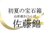 http://www.mameweb.com/image/sakuranbo/title1.jpg